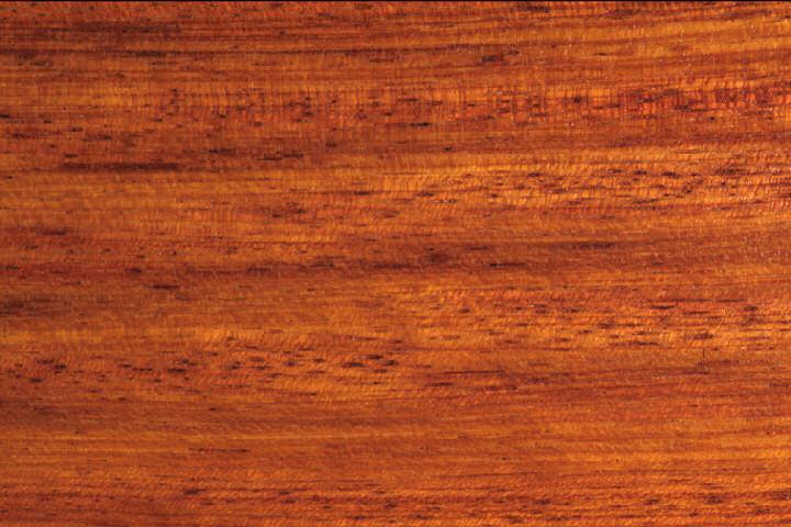 drewno merbau